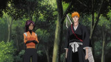 Bleach Episode 246