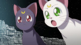 Sailor Moon Crystal Episode 14