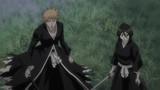 Bleach Season 13 Episode 252