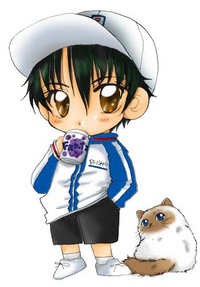 Prince of Tennis National Championship