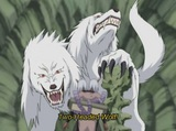 Roar and Howl! The Ultimate Tag-Team! image