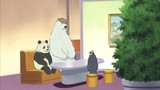 Polar Bear Cafe Episode 25