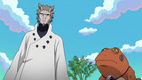 Naruto Shippuden: Season 17 Episode 462