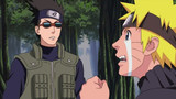 Naruto Shippuden: The Taming of Nine-Tails and Fateful Encounters Episode 254