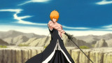 Bleach Episode 309