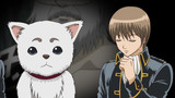 Gintama Season 6 Episode 265