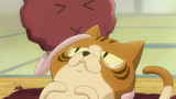 The Nameko Families Episode 8