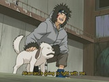 Akamaru Unleashed! Who's Top Dog Now? image