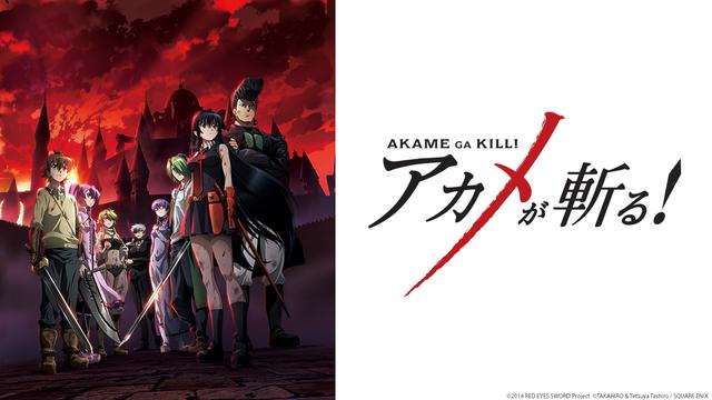 Akame Ga Kill Custom Card Pack (YgoPro) 3ca0b77d83a9136072dd52638bf49f171404603093_full