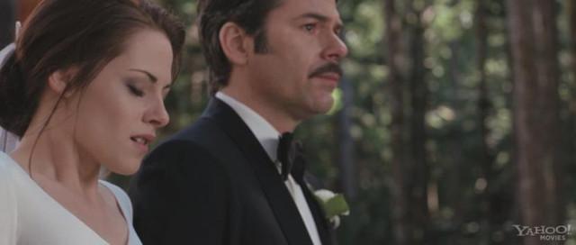 Jacob and renesmee wedding