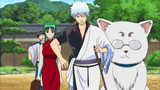 Gintama Season 6 Episode 254