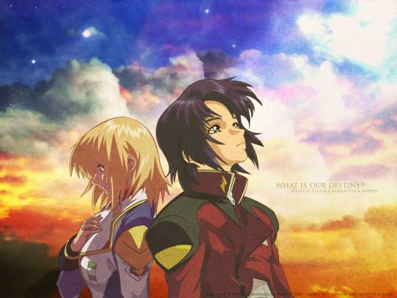 cagalli and athrun relationship test