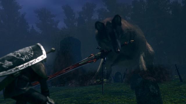 Dragon Slayer,knight Artorias And His Pet Wolf Sif Vs
