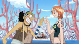 One Piece: Water 7 (207-325) Episode 210