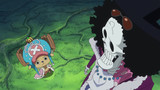 One Piece: Dressrosa cont. (700-current) Episode 771