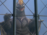 Ultraman 80 Episode 28
