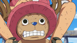 One Piece: Water 7 (207-325) Episode 312