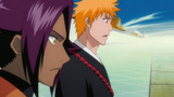 Bleach Episode 312