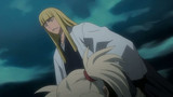 Bleach Season 11 Episode 211