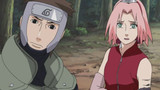 Naruto Shippuden: The Long-Awaited Reunion Episode 44