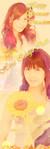 hina_ichigo_chan