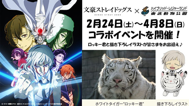 Weretigers And White Tigers Unite For A Special Collaboration Event Between Tobu Zoo In Miyashiro Saitama Prefecture Japan Bungo Stray Dogs DEAD APPLE