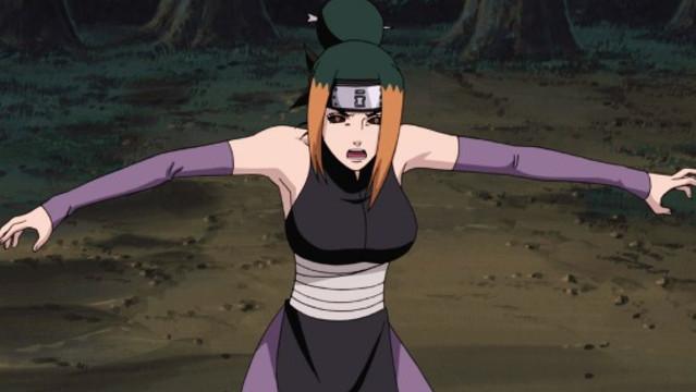 Naruto Shippuden - Staffel 13: Die Sieben Shinobi