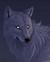 blackwolf23