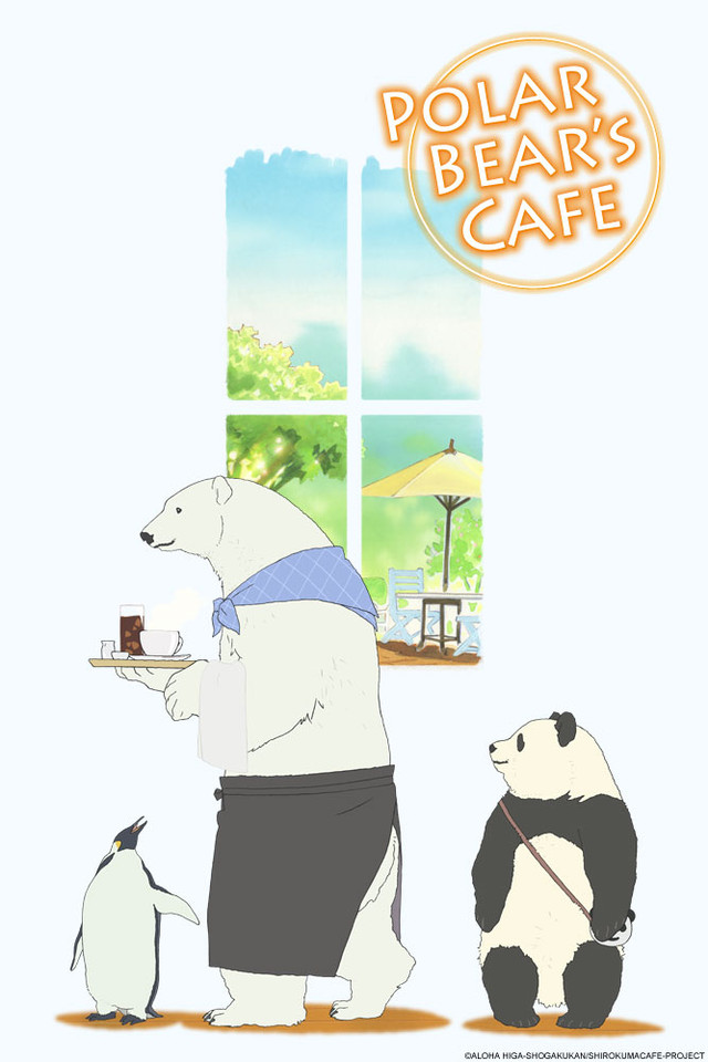 vid mor desktop shy com japan makes featured cub tdy polar video bear debut today in zoo watch watches canonical