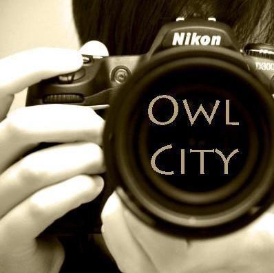 Crunchyroll - owl city fans - Group Info