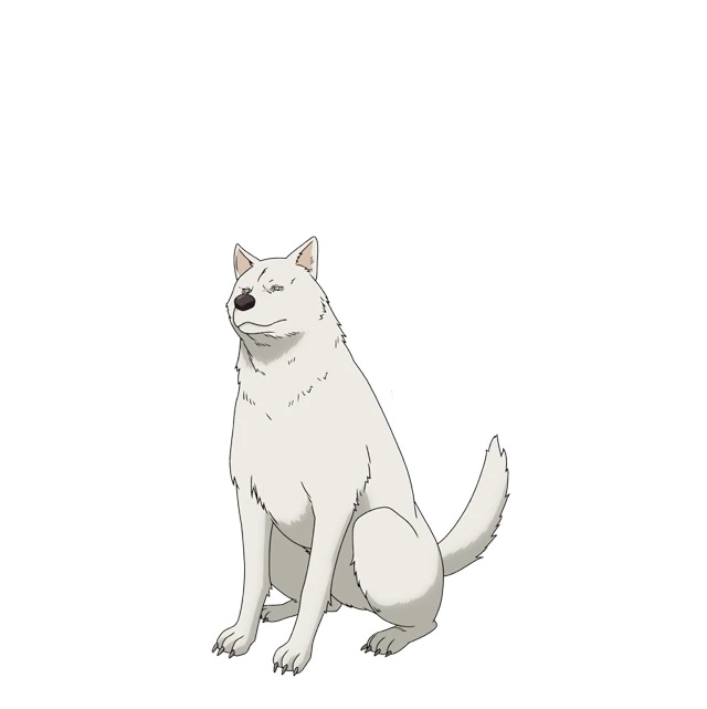 """A character setting of Inu (""""Dog""""), a large white dog from the upcoming Peach Boy Riverside TV anime."""