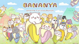 Bananya and the Curious Bunch