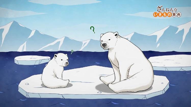 Un cachorro de oso polar y un oso polar adulto se ven desconcertados mientras flotan en una deriva de hielo en una escena del anime de televisión Zannen na Ikimono Jiten.