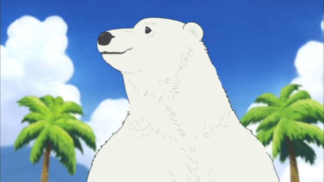 Café del oso polar