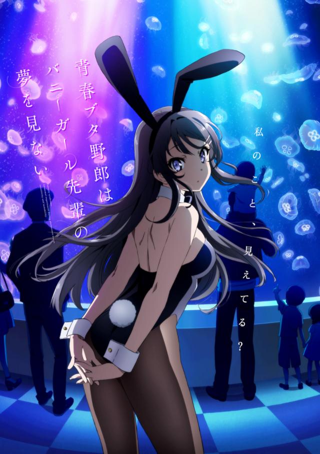 Seishun Buta Yarou wa Bunny