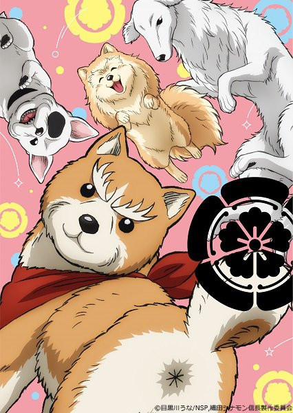 A key visual for the Oda Shinamon Nobunaga TV anime, featuring various Japanese feudal warlords reincarnated as adorable dogs in modern day Japan.