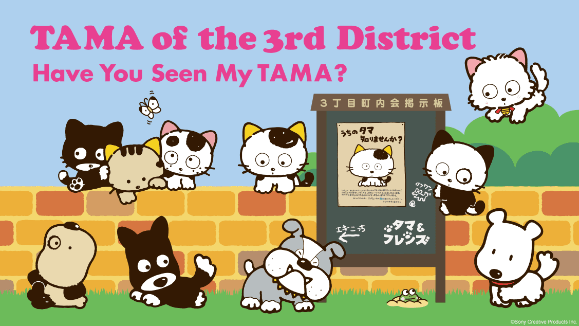 TAMA of the 3rd District -Have You Seen My TAMA?