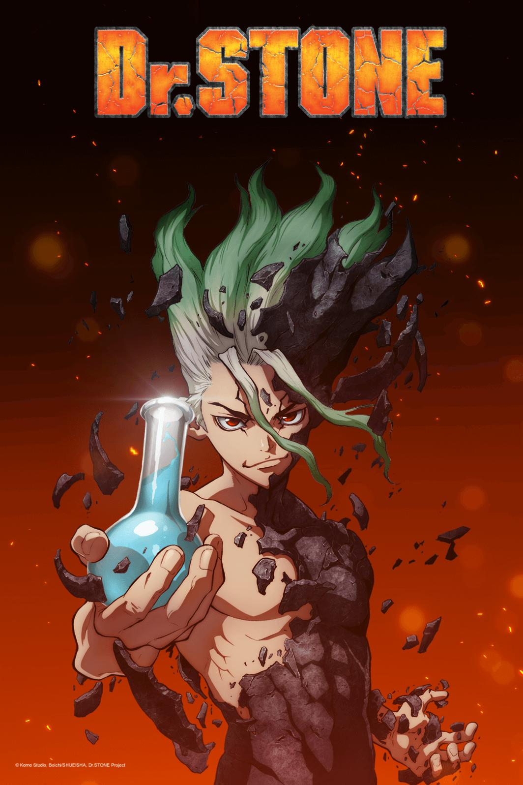 Image result for dr stone