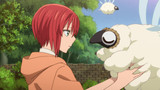 The Ancient Magus' Bride (Mahou Tsukai no Yome) Episodio 13