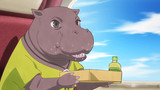 Fall in Love, Pop Idol! Travel, Pygmy Hippo!