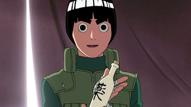 Naruto Shippuden: The Past: The Hidden Leaf Village Episode