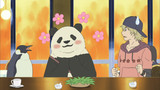 Shirokuma Cafe Episodio 47