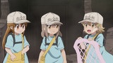 Cells at Work! Episodio 2