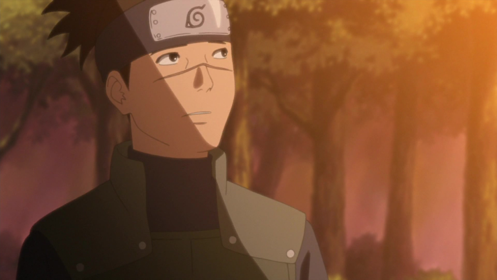 Naruto Shippuden: Season 17 Episode 500, Hidden Leaf Story