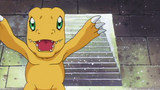 Digimon Adventure Episode 20