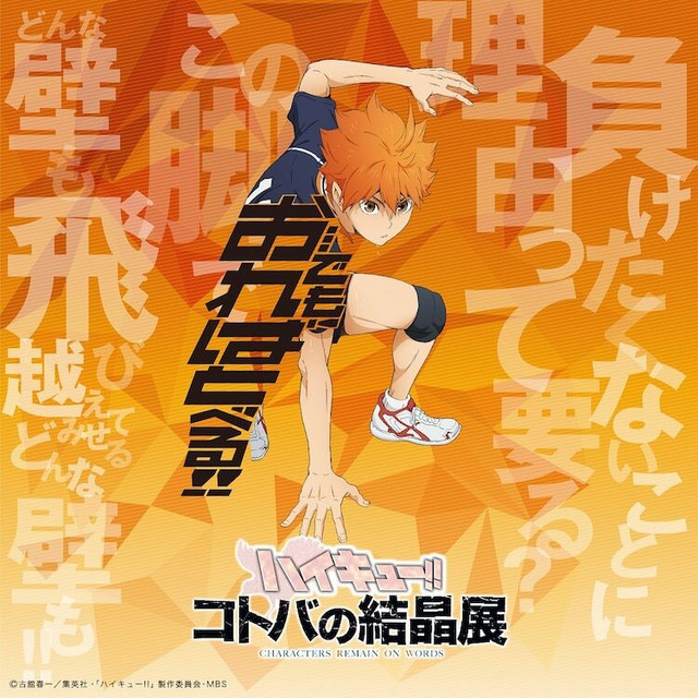 Haikyu!! TO THE TOP exhibition key visual