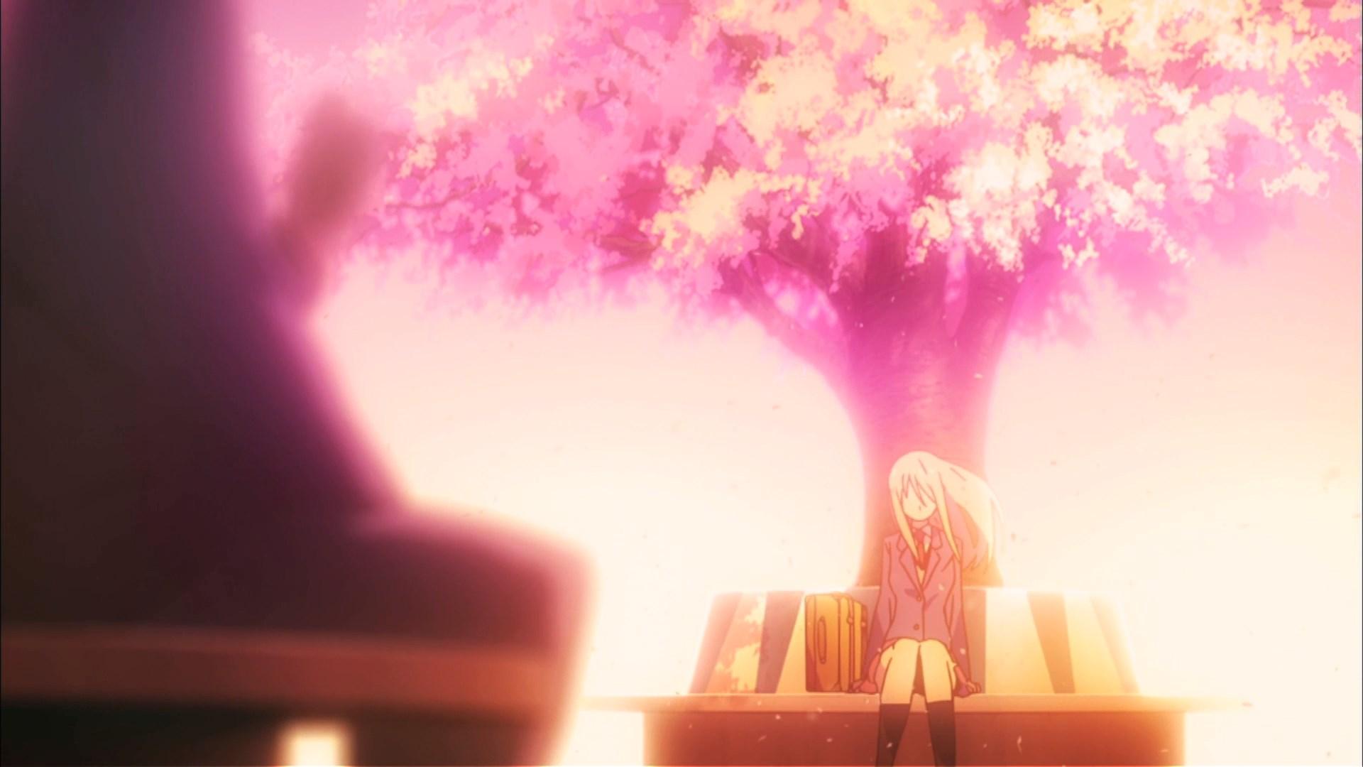 The Pet Girl of Sakurasou