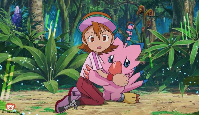 digimon adventure sora piyomon
