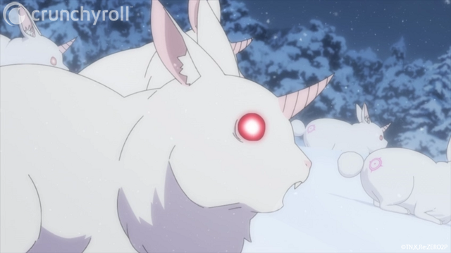 rezero gran conejo