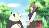 Panda's Apology! / Rin Rin Welcomed!